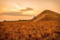 5 Padang Rumput Savana di Indonesia yang Manjakan Mata dan Bikin Instagram Kamu Makin Kece