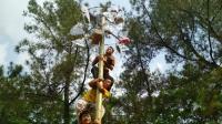 Tawa Kebahagiaan Para Tunanetra saat Ikut Lomba Panjat Pinang