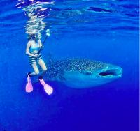 7 Spot Diving Terindah Milik Indonesia, Yakin Deh Susah Ditemuin di Negara Lain!