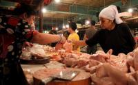 Dua Hari Usai Perayaan Kemerdekaan, Harga Jual Ayam Naik Jadi Rp34.800 per Ekor