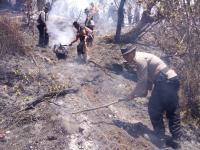 Pastikan Api Padam Pasukan Gabungan Kembali Naik Gunung Sumbing