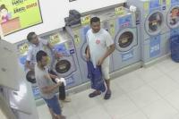 Lempar Kucing Hamil ke dalam Mesin Pengering, Pria Malaysia Divonis 2 Tahun Penjara