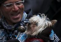 Ribuan Warga Spanyol Hadiri Ritual Unik Pemberkatan Hewan Peliharaan di Gereja Madrid