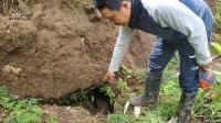 Saluran Air Kuno Juga Ditemukan di Proyek Tol Malang