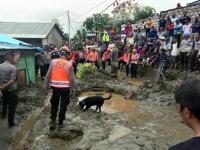 Belasan Anjing Pelacak Temukan 15 Jenazah Korban Banjir Bandang Sentani