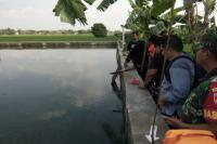 Lepas dari Pengawasan Orangtua, Bocah 3 Tahun Tewas Tenggelam di Kolam Ikan