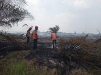 300 Meter Persegi Lahan di Gunung Batukaru Tabanan Terbakar