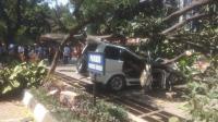 Korban Tewas Tertimpa Pohon di Universitas Pancasila Sedang Antar Anaknya Tes