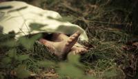 Wanita Hamil 7 Bulan Ditemukan Tewas Penuh Luka di Tempat Wisata