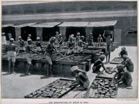 Perdagangan Opium Inggris Memiskinkan Orang India