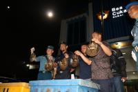 Bea Cukai Dumai Sita Ribuan Ekor Belangkas Mati dalam 32 Boks Fiber