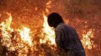 Viral 2 Remaja Malah Berjoget di Kawasan Kebakaran Lahan