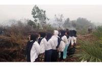 Viral Kelompok Emak-emak Berfoto Ria di Lokasi Kebakaran Lahan