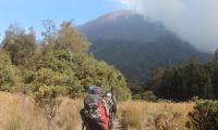 Gunung Semeru Sempat Erupsi dengan Tinggi Kolom Abu 600 Meter
