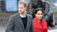 Harry-Meghan Lepas Gelar Kerajaan Inggris dan Bayar Pajak Rp42,6 Miliar