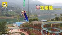 Taman Hiburan di China Gunakan Babi untuk Promosi Atraksi <i>Bungee Jumping</i>