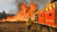 Pesawat yang Perangi Kebakaran Hutan Australia Hilang Kontak