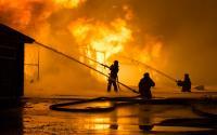 Kebakaran Besar Landa Perkebunan di Venezuela, Tewaskan Sedikitnya 12 Orang