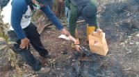 Bakar 20 Hektare Lahan, Polisi Tangkap Seorang ASN di Riau