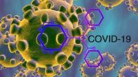 Unair Bantah Temukan Suplemen Penangkal Virus Corona