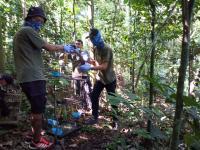 56 Ekor Burung Dilindungi Hasil Sitaan Dilepasliarkan
