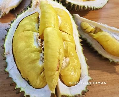 3 Durian Terenak dan Termahal di Dunia, Nomor 2 dari Indonesia!