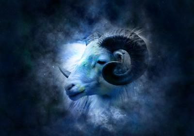 Hewan Peliharaan yang Cocok Berdasarkan Zodiak Anda