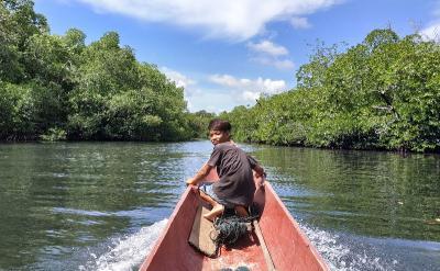 Uniknya Sumur Sibuddaoinan dan Keelokan Hutan Bakau di Mentawai