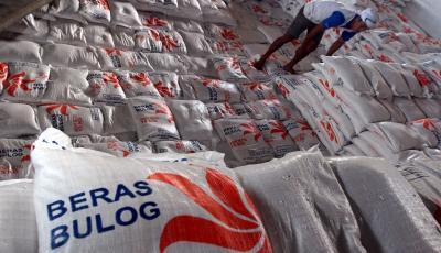 Siapkan Beras Berkualitas, Bulog Incar 70% Pasar Bantuan Pangan Nontunai