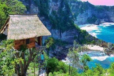 Sensasi Menginap di Rumah Pohon Bali nan Kece, Cuma Rp500 Ribuan!