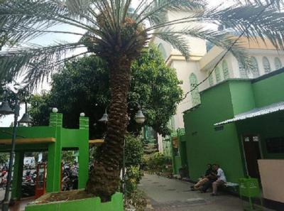 Pohon Kurma Masjid Al-Barkah Bekasi Berbuah, Dipercaya Berkhasiat untuk Kesuburan