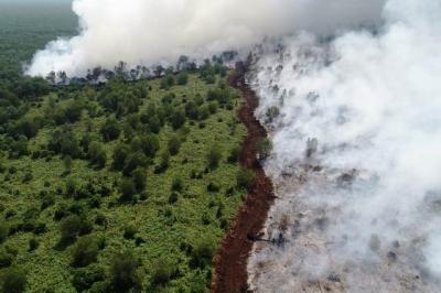 Sudah Dibuat Sekat Pembatas, Api Masih Terus Membakar Lahan di Musi Banyuasin