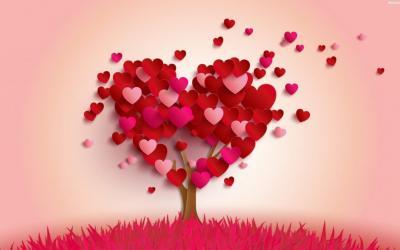10 Sunah Rasulullah Paling Romantis pada Istrinya