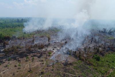 Wacana Copot Kapolda Dinilai Penting untuk Penegakkan Hukum soal Kebakaran Hutan