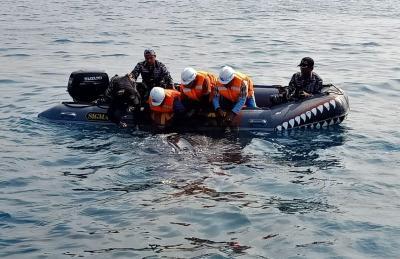 Ini Cara Tim Evakuasi Hiu Paus di PLTU Paiton, Ternyata Butuh 4 Hari Loh!
