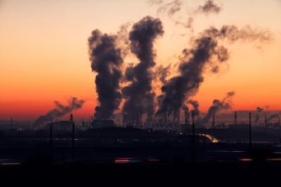 Penelitian Temukan Polusi Udara Jadi Penyebab Rambut Rontok