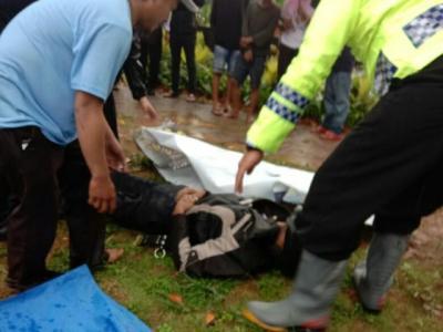 Hujan Deras, Pemotor Tewas Tertimpa Pohon di Bogor