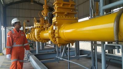 Pembangunan Terminal LNG Teluk Lamong Jadi Jawaban Kekurangan Pasokan Gas di Jatim
