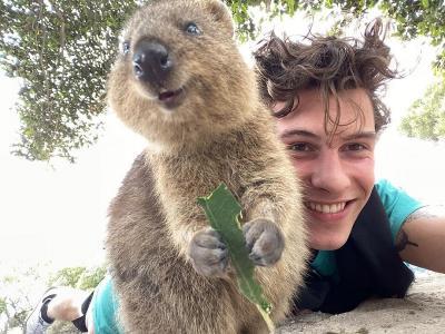 Lucunya Shawn Mendes Foto Bareng Hewan Paling Bahagia di Dunia