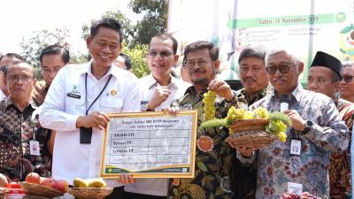 Ini Penampakan Janetes, Anggur Jenis Baru yang Namanya Mirip Cucu Jokowi