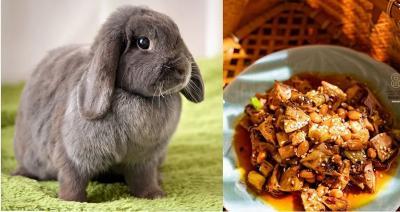 Jual Makanan dari Daging Kelinci, Restoran Ini Dikecam 5.000 Aktivis Pencinta Hewan