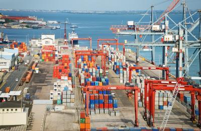 Ekspor Sapi Australia Paling Banyak ke Indonesia