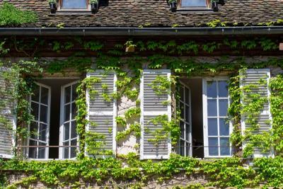 3 Cara Buat Rumah Ramah Lingkungan, Yuk Mulai Cintai Bumi