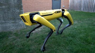 Robot Anjing Ini Mampu Menarik Becak