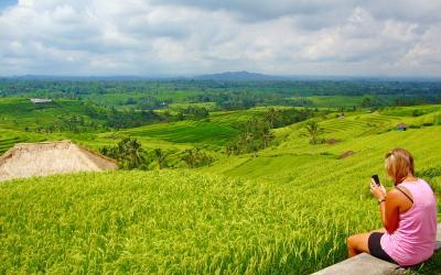 3 Desa Wisata Yogyakarta yang Patut Dikunjungi, Pertama Kembang Arum