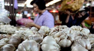 Fakta Kebijakan Impor Bawang Putih 62.000 Ton