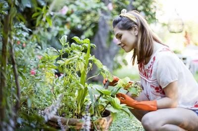 Berkebun Bantu Usir Kebosanan Selama Physical Distancing di Rumah