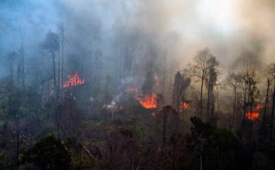 """Masuki """"Bulan Kering"""", Tim Patroli Kebakaran Hutan Dikerahkan"""