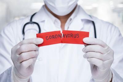 Beredar Kabar Virus Corona Menyebar lewat Lalat, Benarkah?
