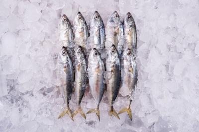 6 Langkah Mencuci dan Membersihkan Ikan Beku